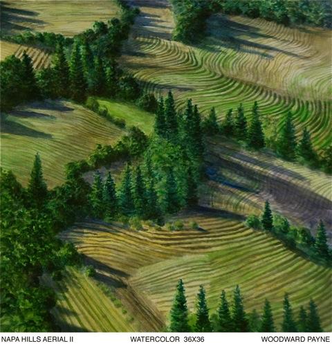NAPA HILLS AERIAL II, 35x35 watercolor