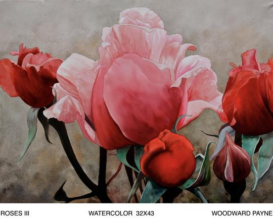 ROSES III 32X43 watercolor